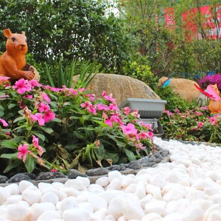 http://www.zhongaojiancai.com/data/images/case/20200113165758_669.jpg